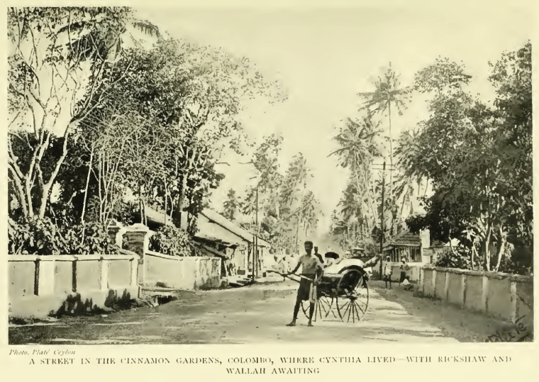 A street in the Cinnamon Gardens, Colombo